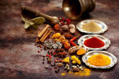 Spices and herbs in silver bowls Royalty Free Stock Images