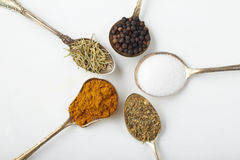 Spices and herbs in silver spoons stock photos