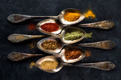 Spices and herbs spoons. Various spices and herbs, top view Royalty Free Stock Photography