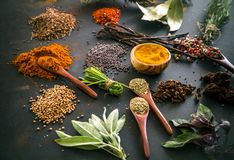 Spices and herbs. Variety of spices and mediterranean herbs. Food background Royalty Free Stock Photo