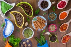 Spices and herbs. Various of spaces and herbs on wooden background Royalty Free Stock Image