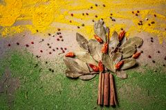 Spices and herbs for website headers. Seasoning scattered on table in the form of a tree, background for packing with food.  stock images