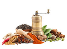 Spices and herbs  on white Stock Image