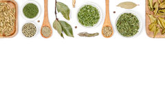 Spices and herbs  on white background. top view Stock Image