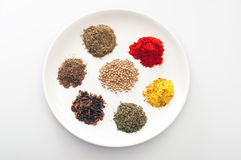 Spices and herbs on the white ceramic plate Stock Photography