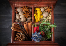 Spices and herbs in a wooden box Stock Image