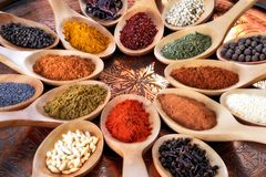 Spices and herbs in wooden spoons. Stock Photos