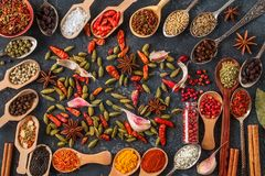 Spices and herbs in wooden spoons. Top view stock photos