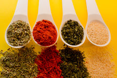 Spices herbs  on yellow Stock Photography