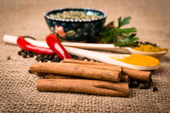 Spices, herds on a burlap Royalty Free Stock Image