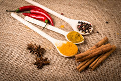 Spices, herds on a burlap Stock Photos