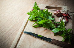 Spices and holy basil herbs Stock Image
