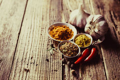 Spices, hot pepper Royalty Free Stock Image