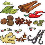 Spices icon set Royalty Free Stock Photo