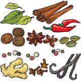 Spices icon set. On white Royalty Free Stock Photo