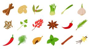 Spices icon set, cartoon style. Spices icon set. Cartoon set of spices vector icons for web design isolated on white background