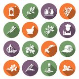 Spices icons flat. Herbs and spices flat icons set of chef cook culinary ingredients isolated vector illustration Royalty Free Stock Photography