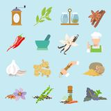 Spices icons flat Royalty Free Stock Photo