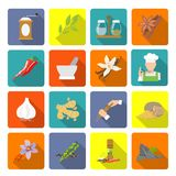 Spices icons flat. Herbs and spices flat icons set of ginger cinnamon mortar and pestle isolated vector illustration Stock Images