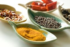 Spices In Fancy Leaf Shaped Bowls-2 Stock Photos