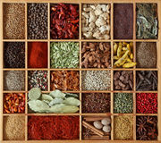 Spices In Wooden Box Stock Images