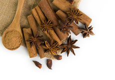 Spices. Includes cinnamon and aniseed on mat Stock Photography