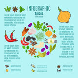 Spices infographic design with cartoon icons Royalty Free Stock Photo