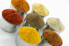 Spices isolated on white background Royalty Free Stock Photo