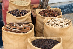 Spices in Kerala, India Royalty Free Stock Image