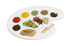 spices and kitchen herbs Stock Images