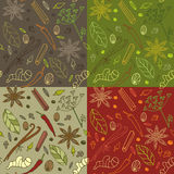 Spices kitchen pattern. Seamless pattern with different spices in four color variations Stock Images