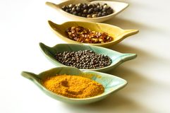 Spices in leaf shaped fancy bowls Royalty Free Stock Images