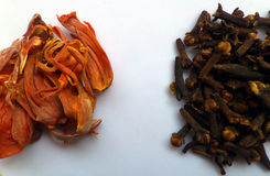 Spices. Mace and cloves from India Royalty Free Stock Photography