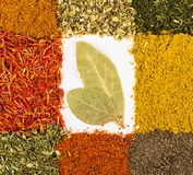 Spices macro decorated as frame Royalty Free Stock Photos