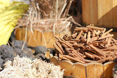 Spices market. Cinnamon in spices market in Egypt Royalty Free Stock Photography