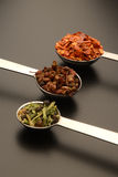 Spices in measuring spoons. Details of three measuring spoons filled with a variety of flavorful spices stock photo