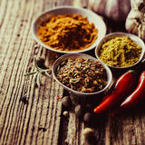Spices in metal bowls Royalty Free Stock Photography