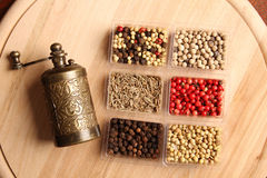 Spices and Mill Stock Photography