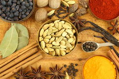 Spices mix Stock Photography
