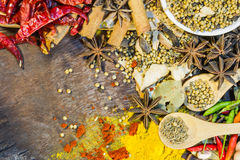 The spices mix for design or decorate project. Stock Photos