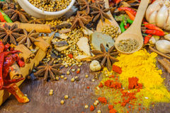 The spices mix for design or decorate project. Stock Photography