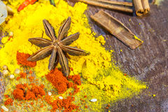 The spices mix for design or decorate project. Stock Image
