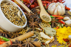 The spices mix for design or decorate project. Royalty Free Stock Images