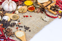 The spices mix for design or decorate project. Royalty Free Stock Photo