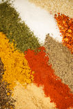 Spices mix Stock Photo