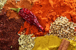 Spices mix on a wooden background Stock Photography