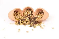 Spices mixed Royalty Free Stock Photos