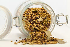Spices mixed Royalty Free Stock Photo