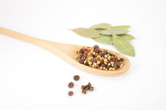 Spices mixed over the spoon Stock Images