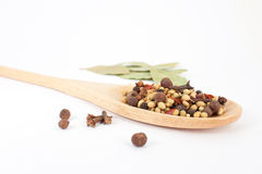 Spices mixed over the spoon Royalty Free Stock Image